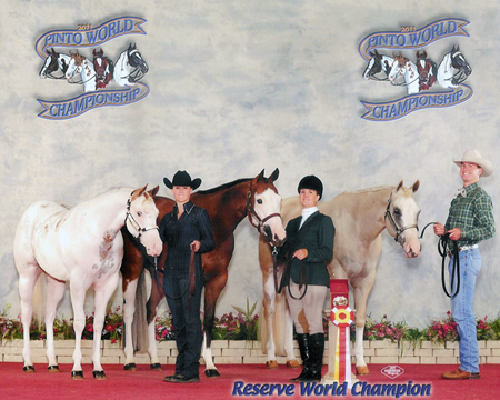 get of sire pinto world show